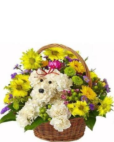 Doggy Basket Flower Arrangement