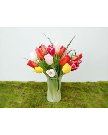 tulips arranged Flower Arrangement
