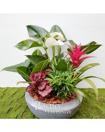 Tropical Garden Medium Flower Arrangement