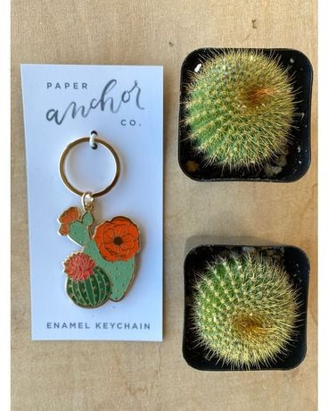 Cactus Key Chain Gifts