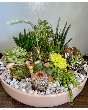 Desert of Succulents Flower Arrangement