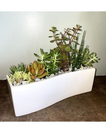 Rectangular Succulent Garden Flower Arrangement