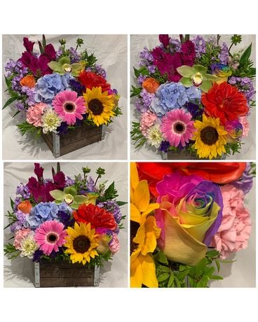Wooden Flower Box in Rainbow colours