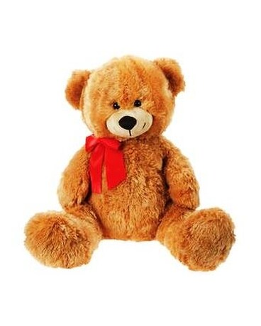 Cuddle Bear in Brown Gifts