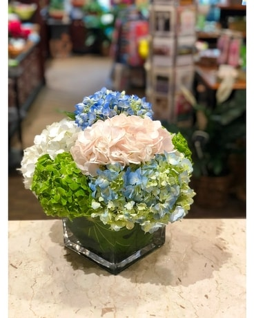 Bold Hydrangea Blooms Flower Arrangement