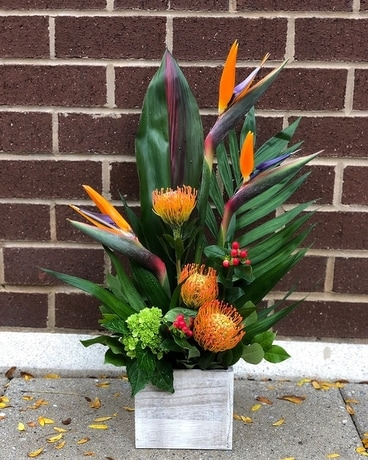 Princeton Paradise Flower Arrangement