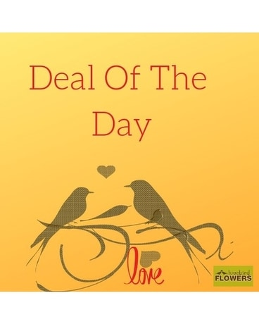 Deal of The Day by Lovebird Flowers Flower Arrangement