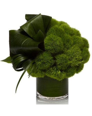 Green Enchantment By House of Flowers Flower Arrangement