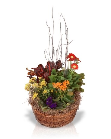 Autumn Blooming Basket Flower Arrangement