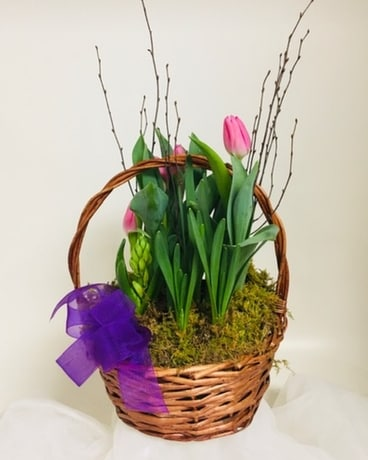 Deal of the Day Specialty Arrangement