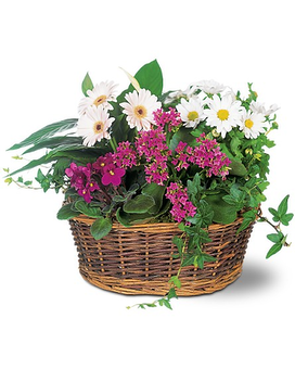 Traditional European Garden Basket Flower Arrangement