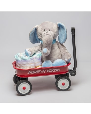 c3cb1a5701ff Baby Gifts Delivery St Clair Shores MI - Rodnick