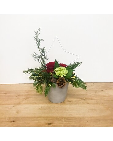 Star Studded Christmas Flower Arrangement