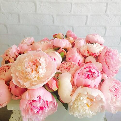 Wedding Flowers Omaha Ne