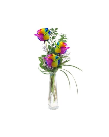 Three Rainbow Roses Flower Arrangement