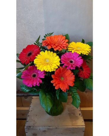 Gerbera Brights Flower Arrangement