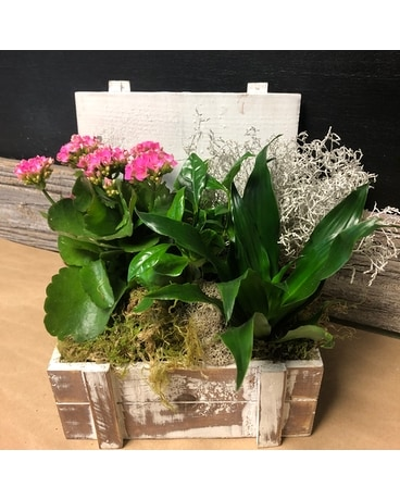 White wash Planter Flower Arrangement