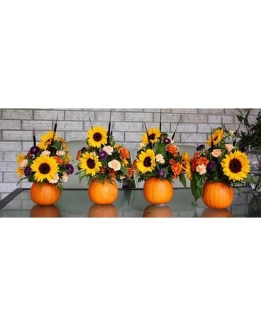 Mini Orange Pumpkin Display Flower Arrangement