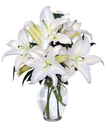 Casa Blanca Lilies Arrangement Flower Arrangement