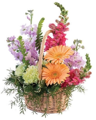 PLEASANT PASTELS BASKET ARRANGEMENT Flower Arrangement