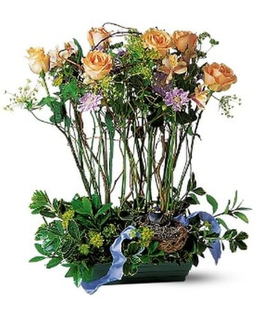 Rose Topiary Flower Arrangement