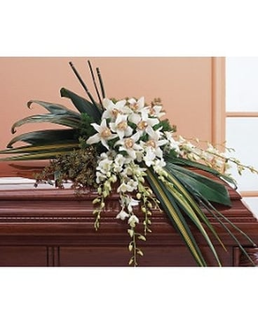 White Orchid Spray Flower Arrangement