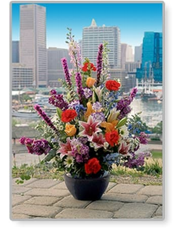Your Baltimore Florist Flower Arrangement