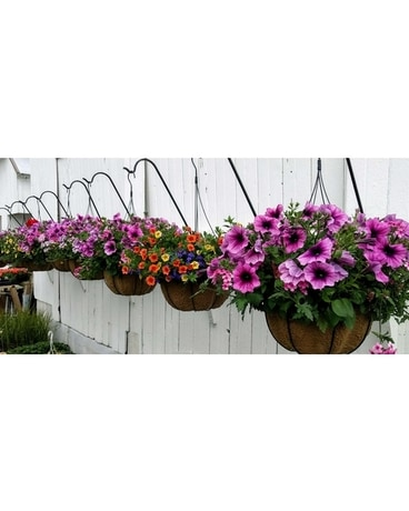 Designer's Choice Spring Hanging Basket Flower Arrangement