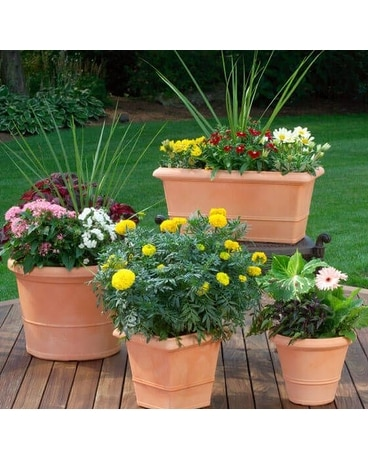 DESIGNER'S CHOICE OUTDOOR PLANTER Flower Arrangement