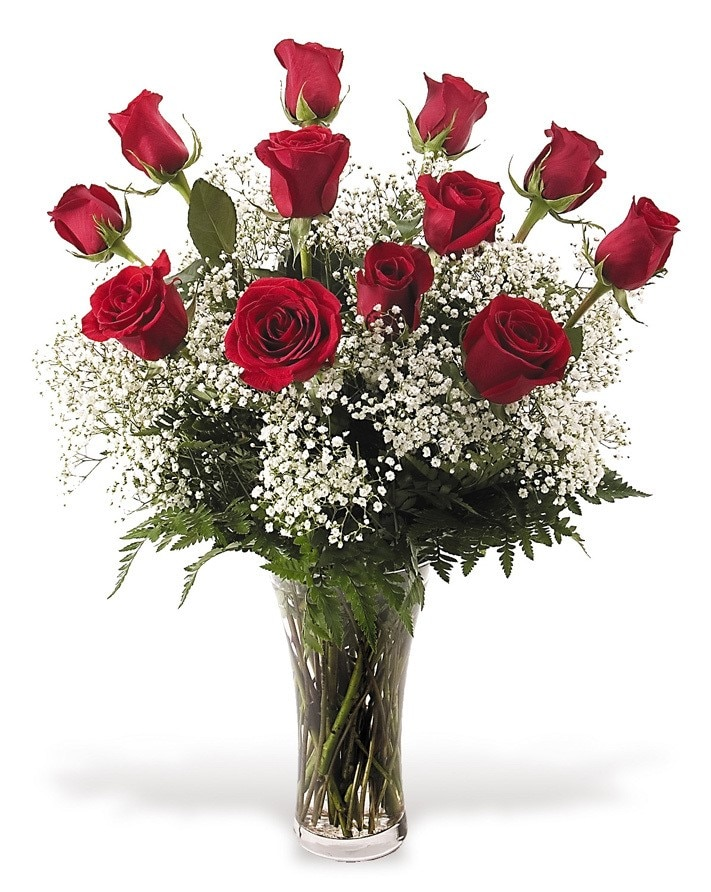A Classic Dozen Red Roses with baby's breath