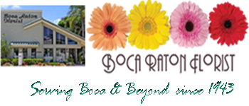 Boca Raton Florist Logo with image of flowers and shop front