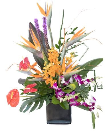 Tantalizingly Tropical Flower Arrangement