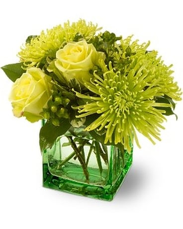 Teleflora's Green Light Flower Arrangement