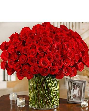 100 Premium Long Stem Red Roses Flower Arrangement