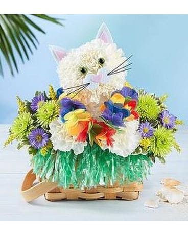 Luau Kitty Flower Arrangement