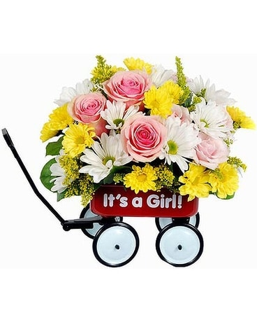 Felly's Baby's First Wagon, Girl