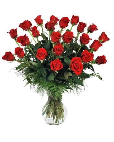 Red Roses, Two Dozen