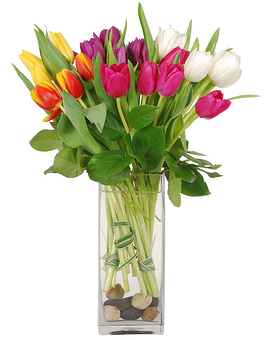 Happy Tulips Flower Arrangement