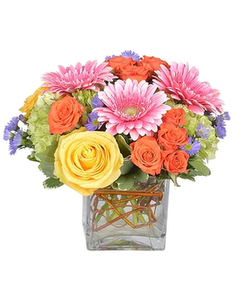 Sorbet Flower Arrangement