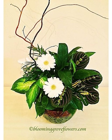 BGF2223 Flower Arrangement