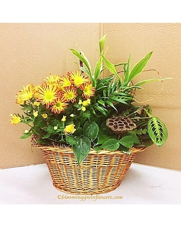 BGF3419 Flower Arrangement