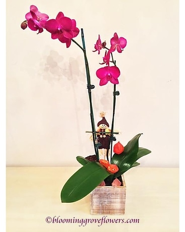 BGF5056 Flower Arrangement