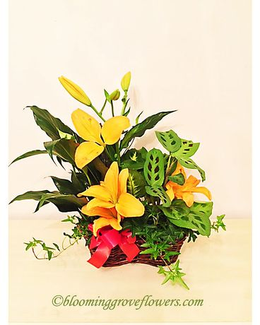 BGF3324 Flower Arrangement