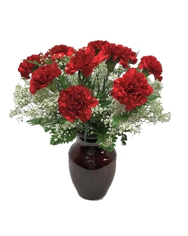 Dozen Red Carnations