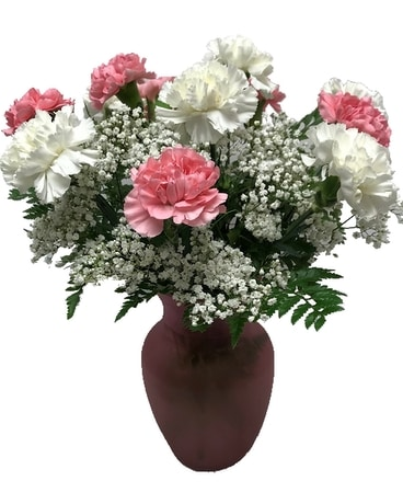 Dozen Pink and White Carnations
