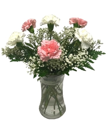 Half Dozen Pink & White Carnations Flower Arrangement