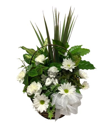 Beloved Dish Garden Flower Arrangement