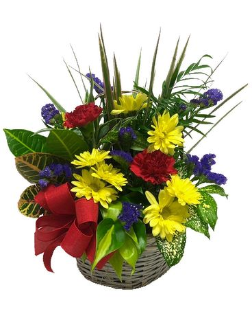 Bright Blooms Dish Garden Flower Arrangement