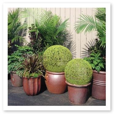 Custom Templates 2015 Plant Rental