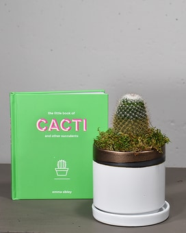 Cactus Lovers Gift Collection Gifts